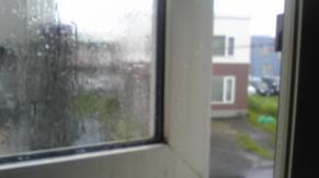 Today Rain 04